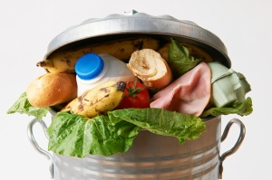 Food waste garbage